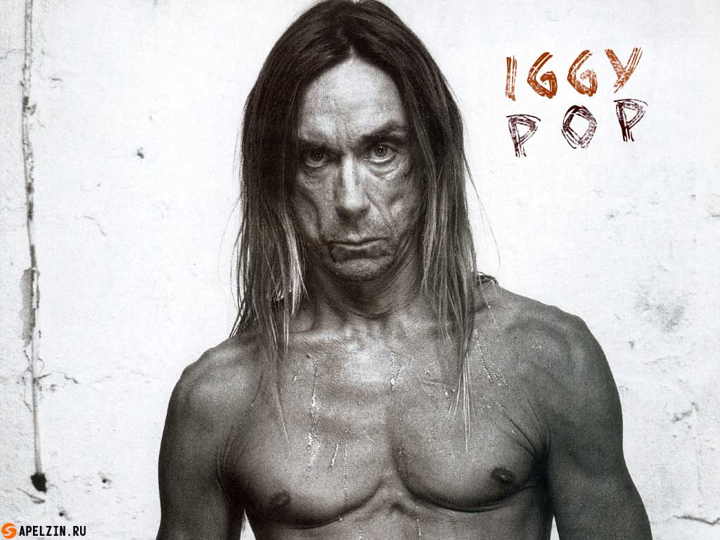 iggy pop gold перевод